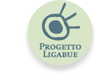 ProgettoLigabue