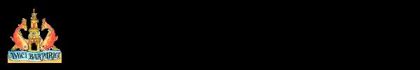 volt-logo-amicibarparigi-2