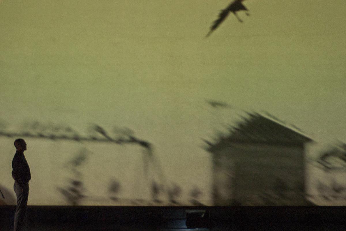 Teatro Sociale Gualtieri – Birdie 1200x800_011