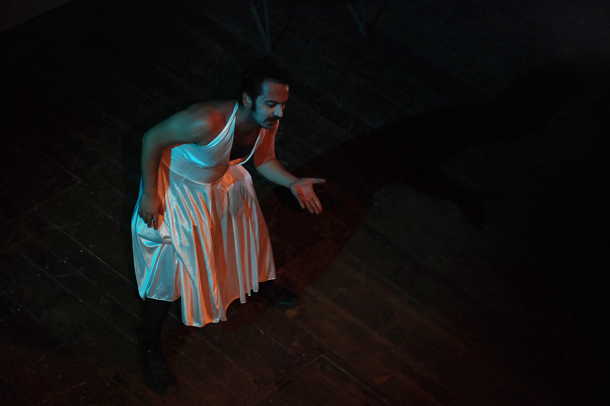 teatro-sociale-gualtieri-amleto-fx-5