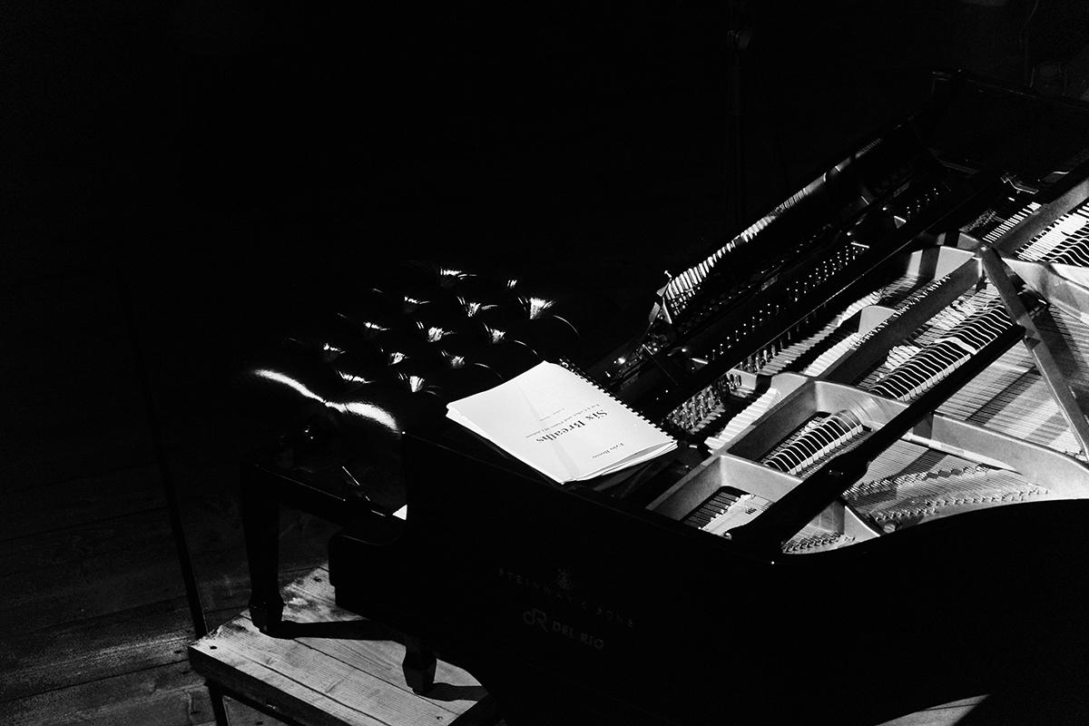 teatro-sociale-gualtieri-ezio-bosso-cello-six-2013-cecchella-4